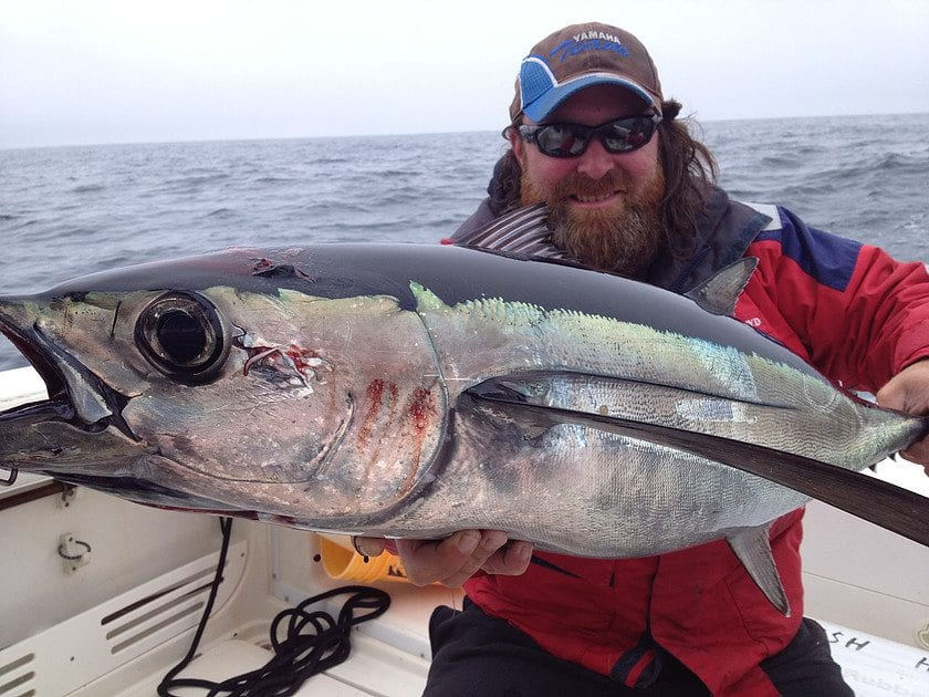Albacore Tuna Fishing
