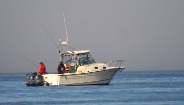 Early July Fishing In Nootka Sound