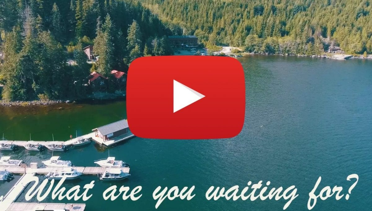 The Nootka Marine Adventure Experience - 2017